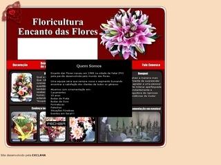 Thumbnail do site Floricultura Encanto das Flores